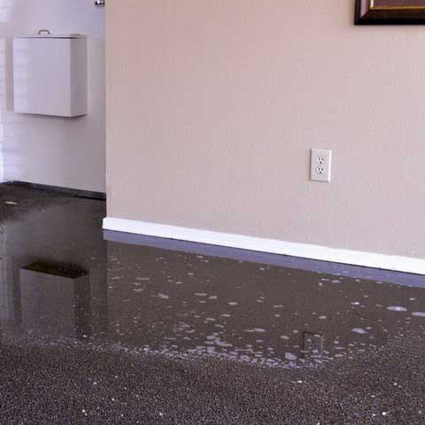 Carpet Cleaning Tile Amp Grout Flood Clean Up Alpine
